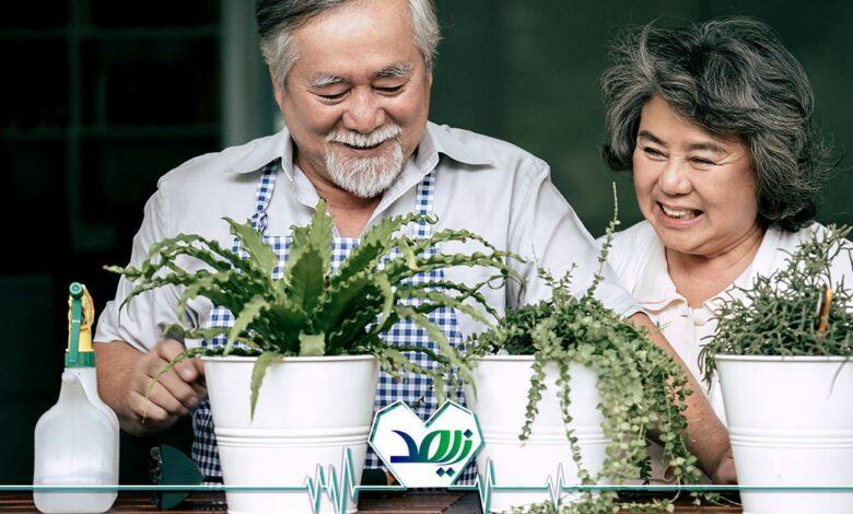 نگهداری گل و گیاه برای تقویت روحیه سالمندان