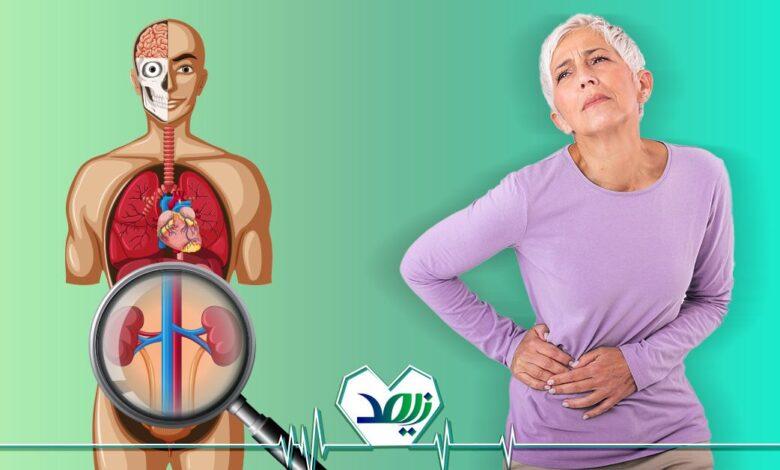 تصویر از علائم نارسایی کلیه در سالمندان را بشناسید