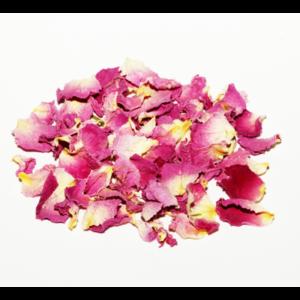 پر گل محمدی