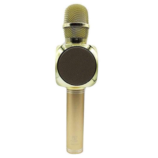 Wireless Microphone Speaker